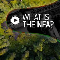 What Is The NFA